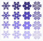 установите снежинку Стоковые Фото