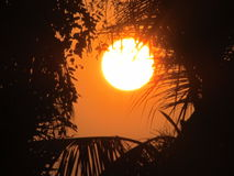 установите солнце Стоковое Фото