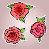 установите стикеры Красивые изолированные цветки Красные розы с лист Стоковое Фото