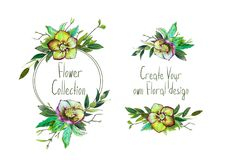 Установите с иллюстрацией зеленых Helleborus и листьев Стоковая Фотография
