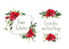 Установите с иллюстрацией красных цветков ` маков Стоковое Фото