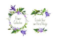 Установите с иллюстрацией цветка, гортензии и листьев фиолетового Clematis Стоковое фото RF