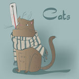 Установите с котятами siames Стоковое Изображение