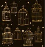 Установите с клетками золота Стоковая Фотография