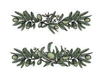 Установите с прованскими гирляндами, ветвями в цвете иллюстрация штока