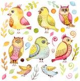 Установите с птицами, листьями и элементами акварели смешными бесплатная иллюстрация