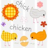 Установите с цыплятами, вектором Стоковые Изображения