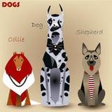 Установите с чистоплеменными собаками Стоковые Фотографии RF