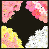Установите угол с вишневым цветом Сакуры, стоцветом, лотосом вектор Стоковое фото RF