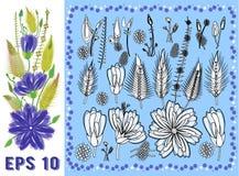 Установите флористических элементов с фиолетовыми цветками, листьями и бутонами иллюстрация штока