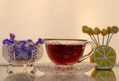 установите чай Стоковые Изображения