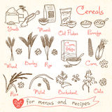 Установите чертежи хлопьев для меню, рецептов и упаковки дизайна Хлопья, гроуты, каша, muesli, корнфлексы, овес, рожь Стоковое Фото
