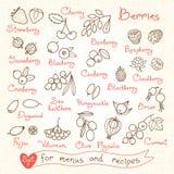 Установите чертежи ягод для меню дизайна, рецептов Стоковые Изображения