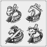 Установите эмблем клуба сверчка, ярлыков, значков и элементов дизайна с лошадью, быком и штосселем Дизайн печати для футболок иллюстрация штока