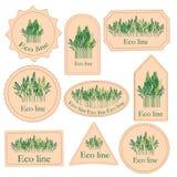 Установите ярлыки с линией eco Стоковое Фото