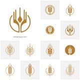 Установите ярлыков зерна и хлеба пшеницы роскошных Пшеница природы Вектор шаблона логотипа пшеницы земледелия иллюстрация вектора