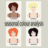 Установите для сезонного анализа цвета Стоковое Изображение