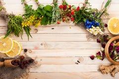 Установите для чая вытрезвителя травяного Стоковая Фотография