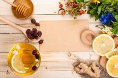 Установите для чая вытрезвителя травяного Стоковые Изображения RF