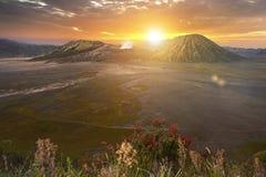Установите Bromo Gunung Bromo на восходе солнца в East Java, Индонезии Стоковые Изображения