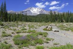 Установите Shasta, вулкан в ряде каскада, северной калифорния Стоковые Изображения