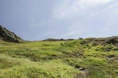 Установка горы пути красивая окруженная огромными холмами Стоковая Фотография RF