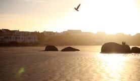 Установка захода солнца романтичная на пляже Стоковое фото RF