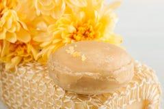 Установка курорта с желтой маргариткой цветет, cosmetcics Стоковое Изображение