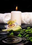 Установка курорта цветка пассифлоры, зеленого папоротника ветви, полотенец Стоковые Фото