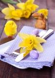установка места daffodil Стоковая Фотография