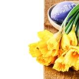 Установка пасхи с желтыми daffodils Стоковые Фотографии RF