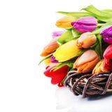 Установка пасхи с красочными тюльпанами Стоковое Изображение RF