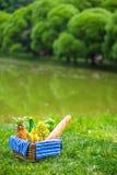 Установка пикника с белым вином, грушами, плодоовощи, Стоковое Фото