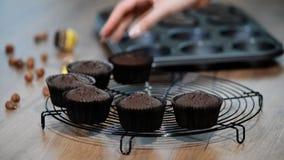 Установка свеже испеченных булочек шоколада на гриль сток-видео