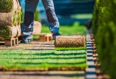 Установка лужайки травы стоковая фотография rf