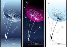 Установленные абстрактные семена одуванчика танцы состава иллюстрация вектора