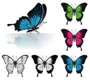 установленные бабочки Стоковое Изображение