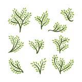Установленные деревья нарисованные рукой иллюстрация штока