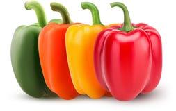 Установленные зеленые, красные, оранжевые, желтые болгарские перцы Стоковое фото RF