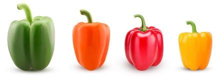 Установленные зеленые, красные, оранжевые, желтые болгарские перцы Стоковая Фотография RF