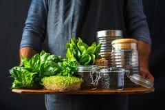 Установленные зеленые хлопья овощей вручают человеку здоровую еду vegan стоковая фотография rf