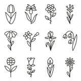 установленные иконы цветка Содержит значки - стоцвет, розовый цветок, cornflower, радужку, calla, тюльпан и другие вектор иллюстрация штока