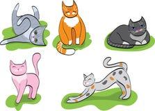 установленные коты шаржа Стоковые Фото