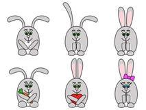 установленные кролики Стоковые Фотографии RF