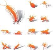 установленные насекомые икон 102a Стоковое Изображение RF