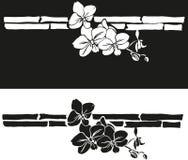 установленные орхидеи предпосылок Стоковая Фотография