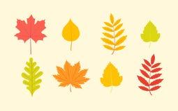 Установленные пестротканые листья иллюстрация вектора