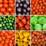 установленные предпосылки vegetable Стоковое фото RF