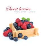 Установленные свежие ягоды в коробке стоковые фото