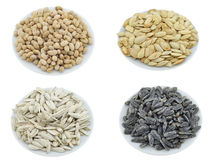установленные семена 1 закуски nuts Стоковые Изображения RF